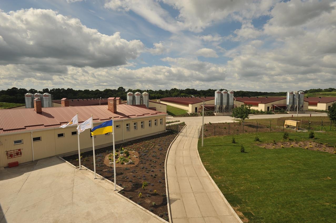 «Авангард» в 4 рази збільшить потужність біогазового заводу на Херсонщині