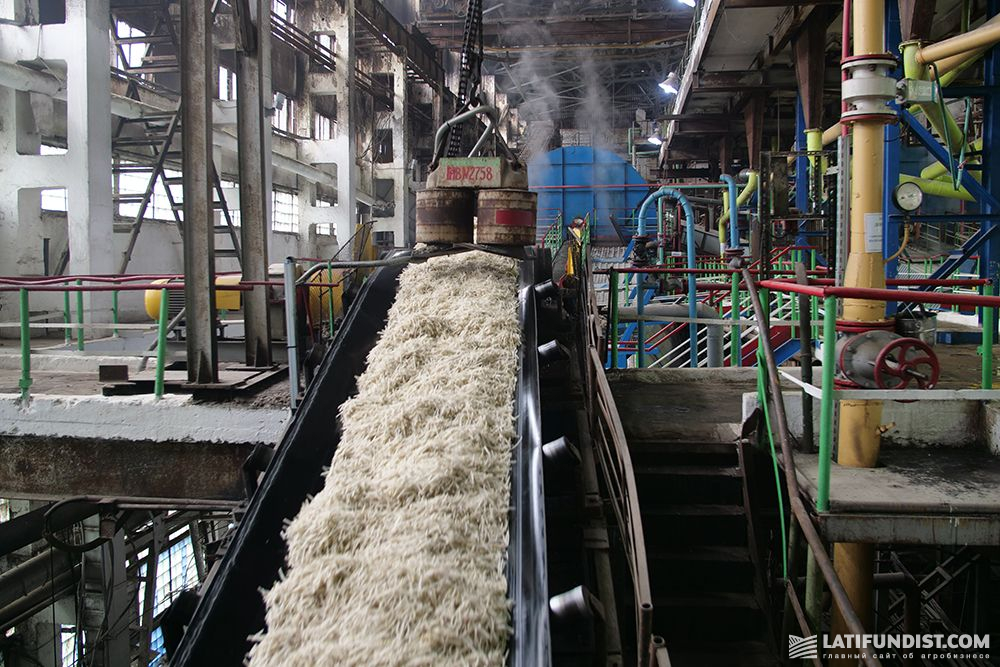 Досвід енергоменеджменту на Новооржицькому цукровому заводі